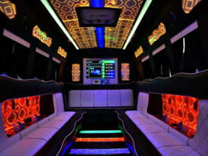 Denver Party Ride Limo Bus